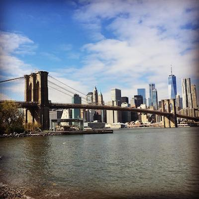Brooklyn Bridge and Manhattan Skyline. Private Brooklyn Walking Tour