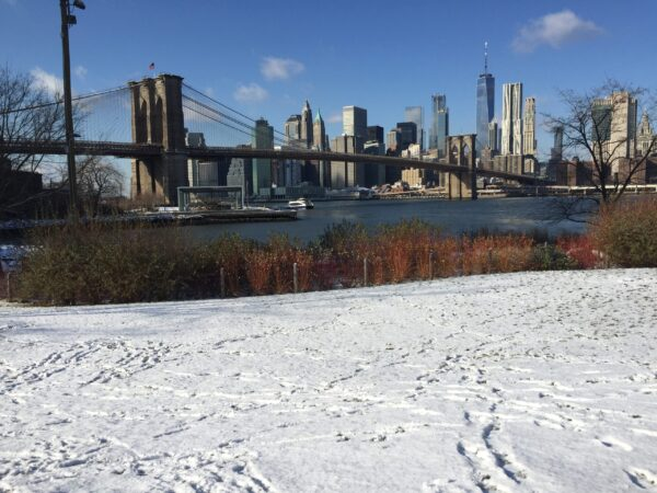 Things To Do In NYC In January & Weather