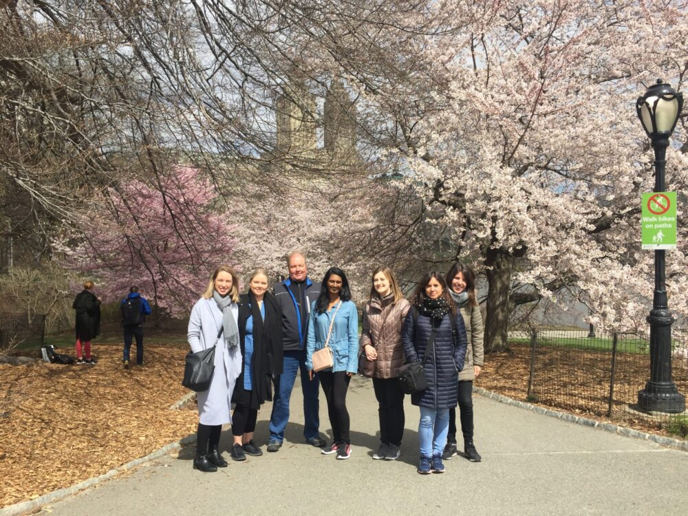 Example of thing to do in New York in April, a walking tour of Central Park in full bloom.